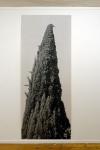 tirage baryté, 190 x 75 cm