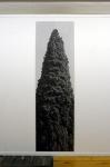 tirage baryté, 190 x 59,6 cm