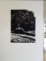Monotype 125 x 95 cm