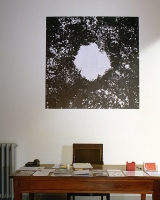 81 tirages argentiques, 154x154 cm
